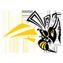 CamasValley.logo